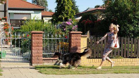 Klara (Wolke Hegenbarth) führt Hund Gustav spazieren, doch der büxt ihr aus.