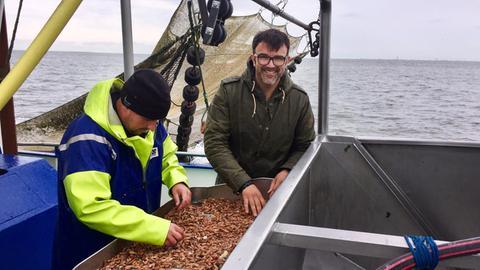 Tarik packt an Bord mit an. Die fangfrischen Krabben müssen direkt sortiert und abgekocht werden.
