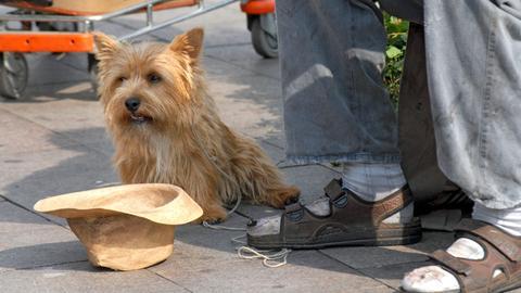 Bettel-Hund: Elvis verdient sich mit dem Obdachlosen Paule (Peter Heinrich Brix, r.) seine Würstchen auf der Straße.
