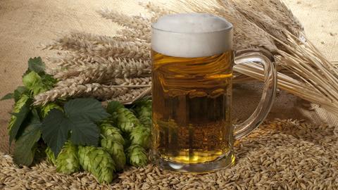 Bierkrug mit Hopfen und Gerste.