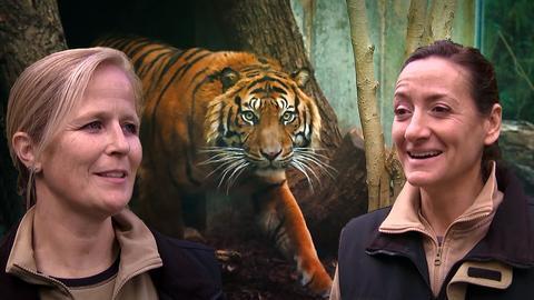 Tierärztinnen Dr. Christina Geiger und Dr. Nicole Schauerte
