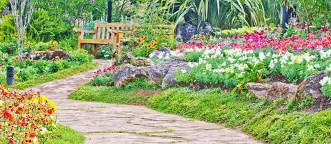 Schöner Garten mit Sitzbank.