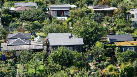 Eine Kleingartenkolonie aus der Vogelperspektive.