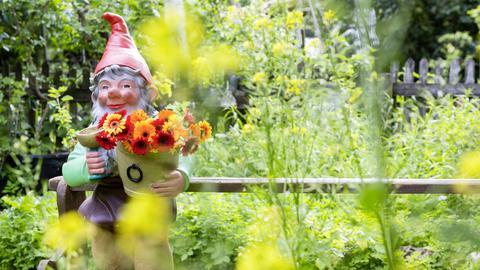 Gartenzwerg in einem deutschen Vorgarten