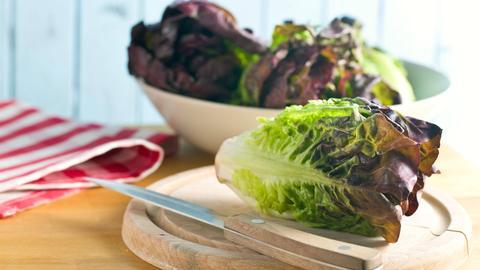 Ein Kopf Romanasalat mit einem Messer auf einem runden Holzbrett. Im Hintergrund eine Schüssel mit weiteren Salatköpfen.