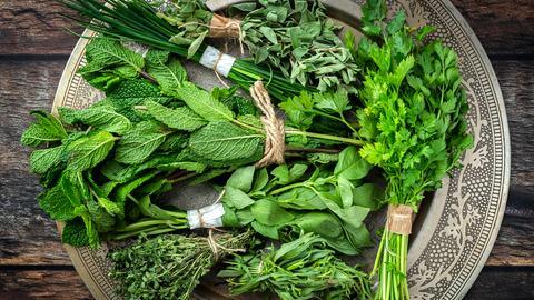 Leuchtend grüne Küchenkräuter wie Petersilie und Schnittlauch liegen auf einer silbernen Platte auf Holzgrund.