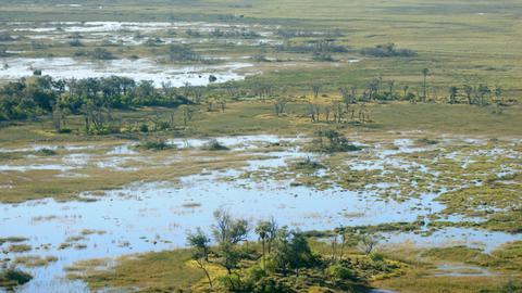 Landschaft von Okavango