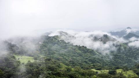 Ein Panorama des Regenwaldes von Costa Rica in Monteverde, Puntarenas Province, Costa Rica.