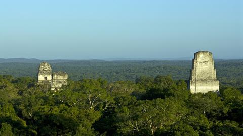 Alte Maya-Ruinen und Tiefland-Regenwald im Tikal Nationalpark in Petén, Guatemala,