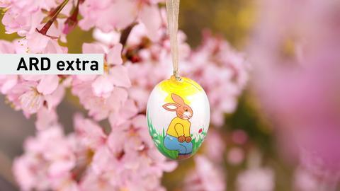 Ein mit einem Osterhasen bemaltes Osterei hängt zwischen den Blüten einer japanischen Kirsche. Text: ARD Extra.