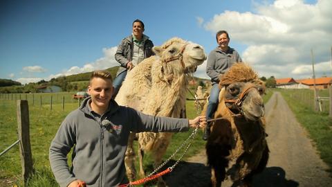 Andreas Gehrke auf dem Kamel bei Familie Zintl