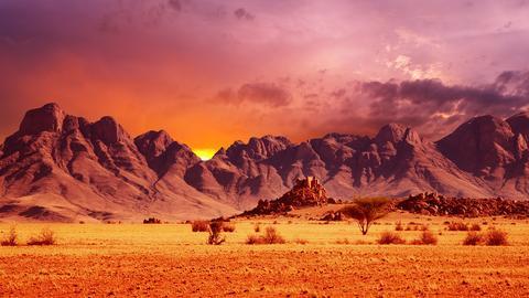 Die Westküste Südafrikas.