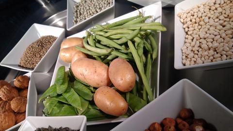 Lebensmittel auf Tellern angerichtet: Hülsenfrüchte, Nüsse, Kartoffeln und Bohnen.