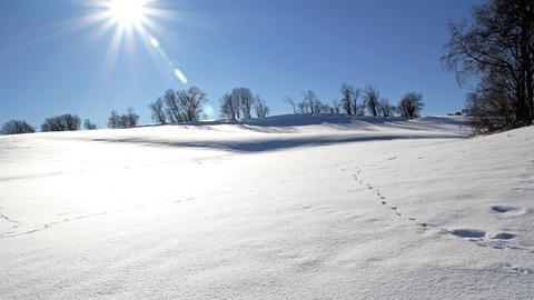 Malerische Winterlandschaft.
