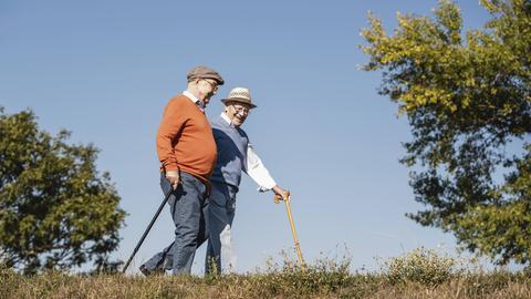 Zwei ältere Herren beim Spaziergang
